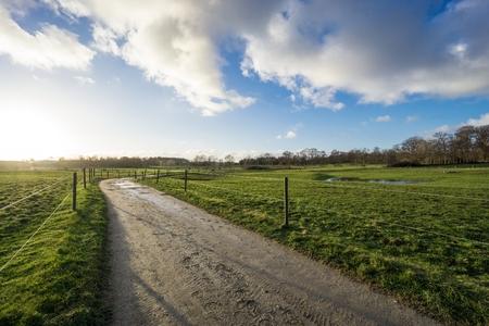 elektrischer Zaun: Weiden mit Elektrozaun und Feldweg im Gegenlicht