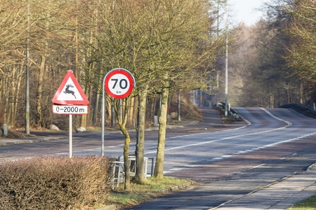 km: Road sign warning for deer and speed limitation