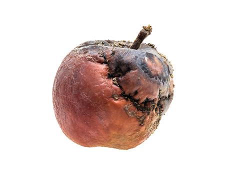 bad apple: Partly rotten red apple with fungus on white background
