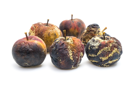 bad apple: Many rotten apples on white background seen from front Stock Photo