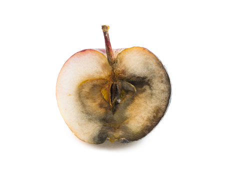decompose: Rotten apple cut in half on white background