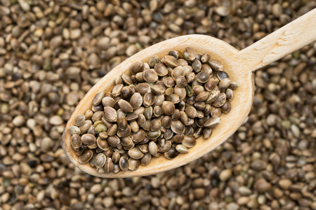 hemp hemp seed: Wooden spoon with hemp seeds seen from above over a hemp seed background