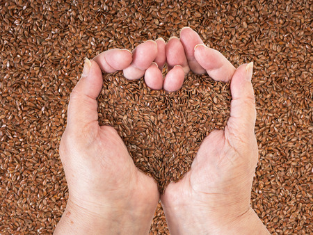 linseed: Linseeds held by a woman hands over a linseed background