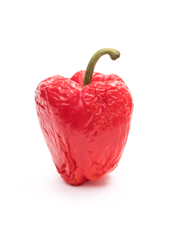 Old wrinkled red bell pepper in vertical position on white background