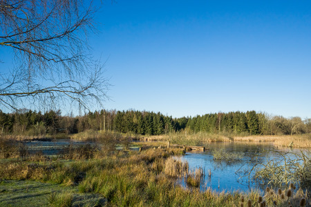 View over a meadow and a small lake with clear blue sky