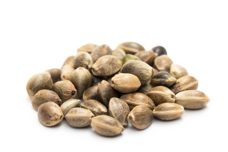 Close up of a small pile of hemp seeds on white background Stockfoto