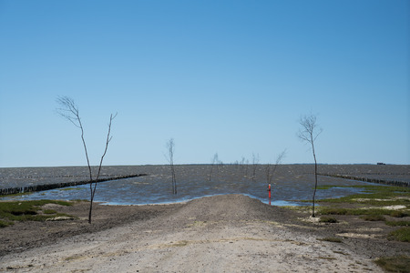 Road that is flooded at high tide and marked with branches to the danish island Mandø Stock Photo