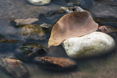 Close up of single brown autumn leaf in a stream of water shot with long exposure