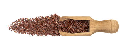 Scoop with red quinoa seeds in a line in front of it seen directly from above and isolated on white background