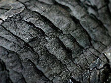 Charred Wood Texture Stock Photo