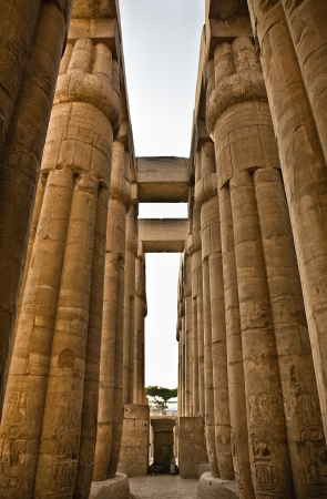 hugh: Hugh close lotus columns of Luxor Temple  western side of this courtyard