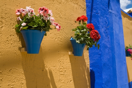 comfortableness: Wall with flower pots  Cordoba Fair stands, Andalusia, Spain Stock Photo