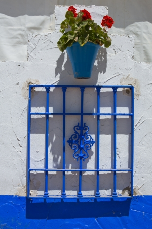 comfortableness: Wall with flower pots and  grille at  Cordoba Fair stand, Andalusia, Spain Stock Photo