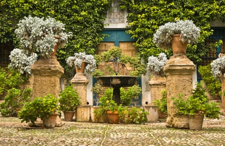 Garden Courtyard of a typical house in Cordoba, Spain photo