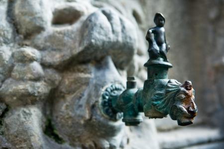 lionhead: Lion shaped bronze tap at cloisters of  Holy Cross and Saint Eulalia, Barcelona, Spain