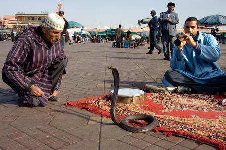 MARRAKESH, MOROCCO - JANUARY 21  Snake charmers cobra dancing at famous Marrakesh square Djemaa el Fna on January 21, 2010 in Marrakesh, Morocco
