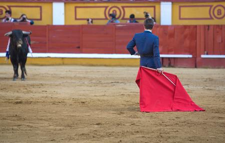 torero: The torero fights in the welfare bullfight, Badajoz, Spain