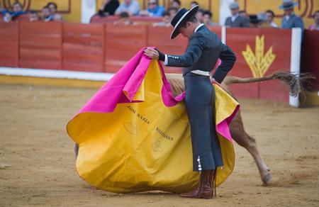 torero: BADAJOZ, SPAIN, APRIL 12  The spanish torero Jose Maria Manzanares performing a bullfight, on April 12, 2014 in Badajoz, Spain