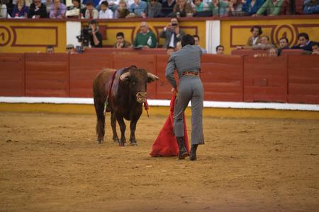 torero: BADAJOZ, SPAIN, APRIL 12  The spanish torero Miguel Angel Perera performing a bullring, on April 12, 2014 in Badajoz, Spain Editorial
