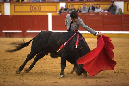 torero: BADAJOZ, SPAIN, APRIL 12  The spanish torero Alejandro Talavante performing a bullfight, on April 12, 2014 in Badajoz, Spain