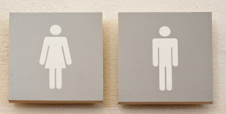 Womens And Mens Toilets Sign, Grey On White over stony wall  photo