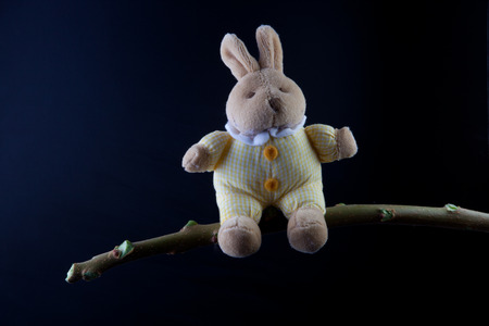 Furry, cuddly, lovable little rabbit toy sat on a green branch, isolated over black background