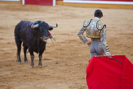 capote: The bullfighter wait the bull charge with the muleta during a bullfight
