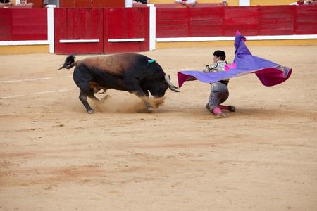 バダホス, スペイン, 6 月 21 日 2014 年 6 月 21 日バダホス、スペインでの彼のマタドール、イスラエル Lancho 受信膝のブル、 報道画像