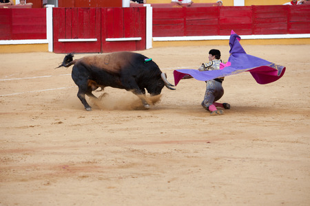 BADAJOZ, SPAIN, JUNE 21  The spanish torero Israel Lancho receiving on his knees the bull, on June 21, 2014 in Badajoz, Spain Redakční