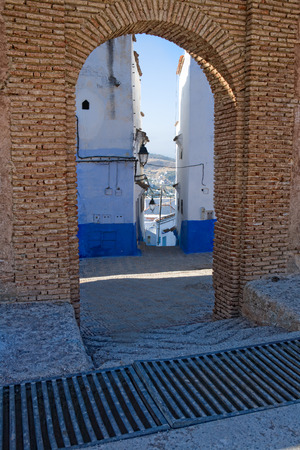 Traditional moroccan architectural details in Chefchaouen, Morocco, Africa  photo