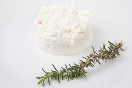 granulated: Granulated cottage cheese with a rosemary branch. Isolated over white