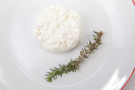 granulated: Granulated cottage cheese over plate with a rosemary branch. Isolated over white