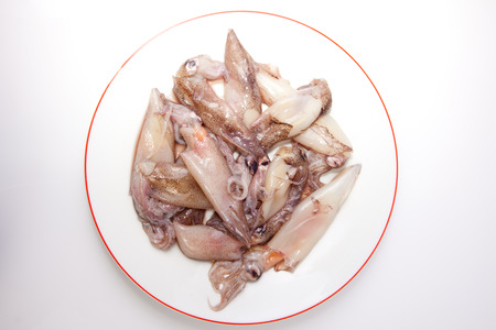 ove: Small freshly squids. Group on plate isolated ove white background Stock Photo