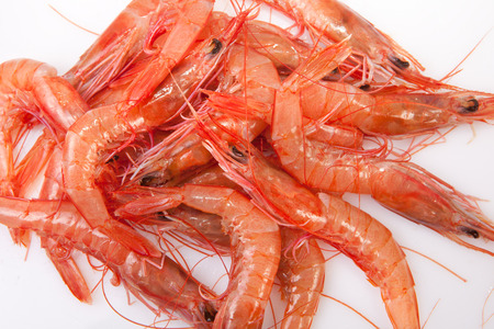 decapod: Little white shrimps also called in Spain rice shrimps. They are usually cooked in rice recipes like Paella dish