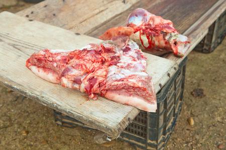 slaughtering: Pezzi di maiale oltre trogolo di legno. Macellazione casa tradizionale in una zona rurale, Extremadura, Spagna Archivio Fotografico