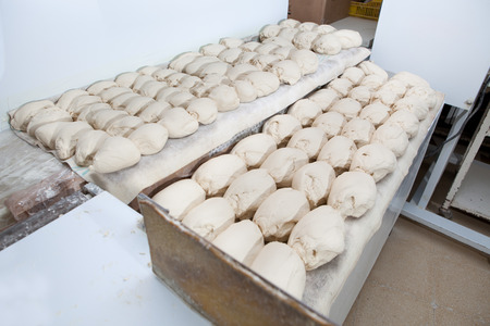 fermentation: Raw pieces of bread dough before fermentation. Manufacturing process of spanish bread Stock Photo