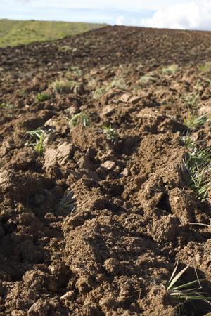 begining: Freshly plouged field at spring begining, Badajoz, Spain Stock Photo