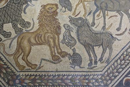polychrome: Roman polychrome mosaic of Century VI AC with the representation of a wild animals as a lion, turtle, rabbit, etc.