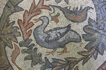 polychrome: Roman polychrome mosaic representing a goose