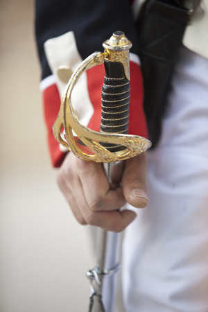 sabre: Hand over marshal sabre at La Albuera Battle Reenactment