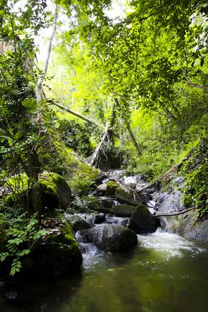 extremadura: One of many streams of Ambroz Valley, Banos de Montemayor, Extremadura