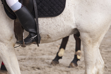 detailed view: Detailed view of a boot rider with spurs at jumping competition