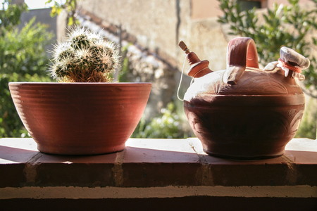 flower pot: Earthenware pitcher and flower pot of clay against the light. Rustic garden at bottom