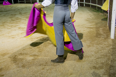fighting bulls: Night training for bullfighters or tentadero. This performance is made for select animals for breed braves fighting bulls