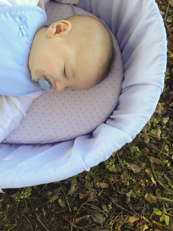 four month: Sleeping four month baby boy lying in carrycot over forest surface. Overhead view