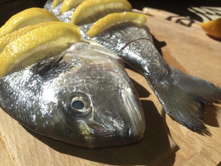 gilthead bream: Raw marinated gilt-head bream over cutting board before cooking