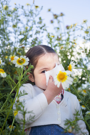 4 year old: 4 year old toddler girl sneezing in a daisy meadow. She is allergic to flowers Stock Photo