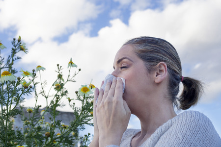snot: Young woman sneezing in a daisy flowers meadow. She is allergic to flowers