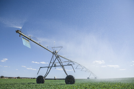 pivot: Center pivot irrigation system with sprinklers at work under sunrays, Badajoz, Spain