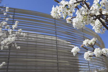 Badajoz, Spain, April 19: Congress Center building designed by Jose Selgas and Lucia Cano